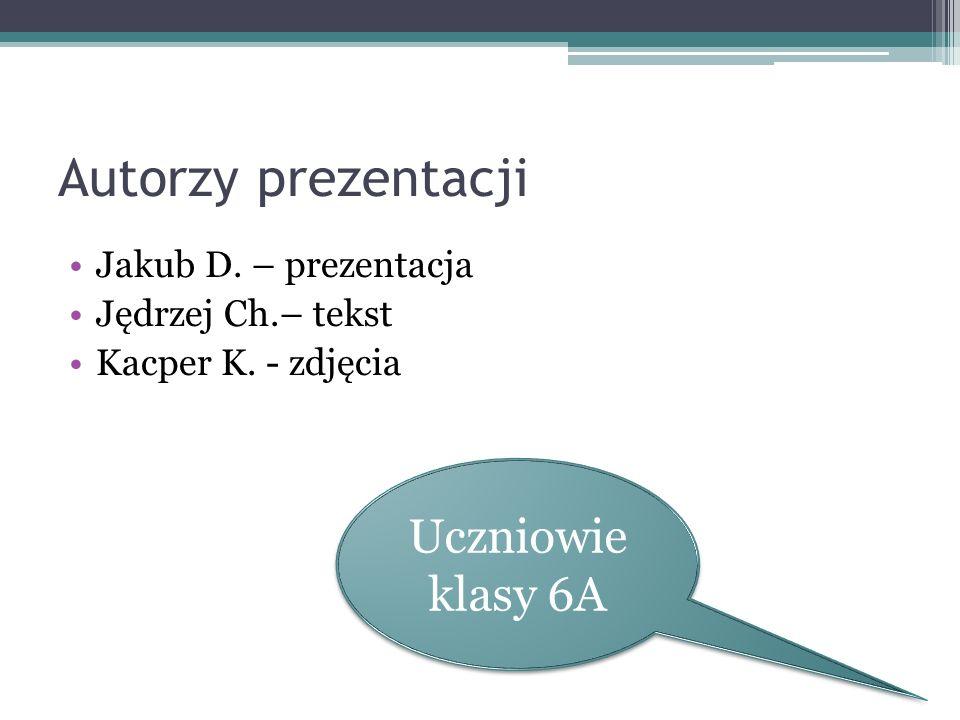 Autorzy prezentacji Uczniowie klasy 6A Jakub D. – prezentacja