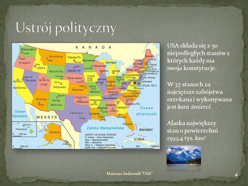 Ustrój polityczny USA składa się z 50 niepodległych stanów z których każdy ma swoja konstytucje.