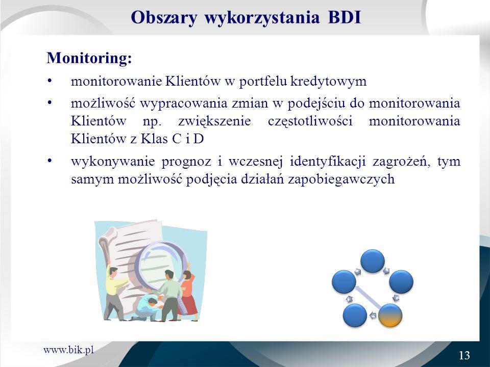 Obszary wykorzystania BDI
