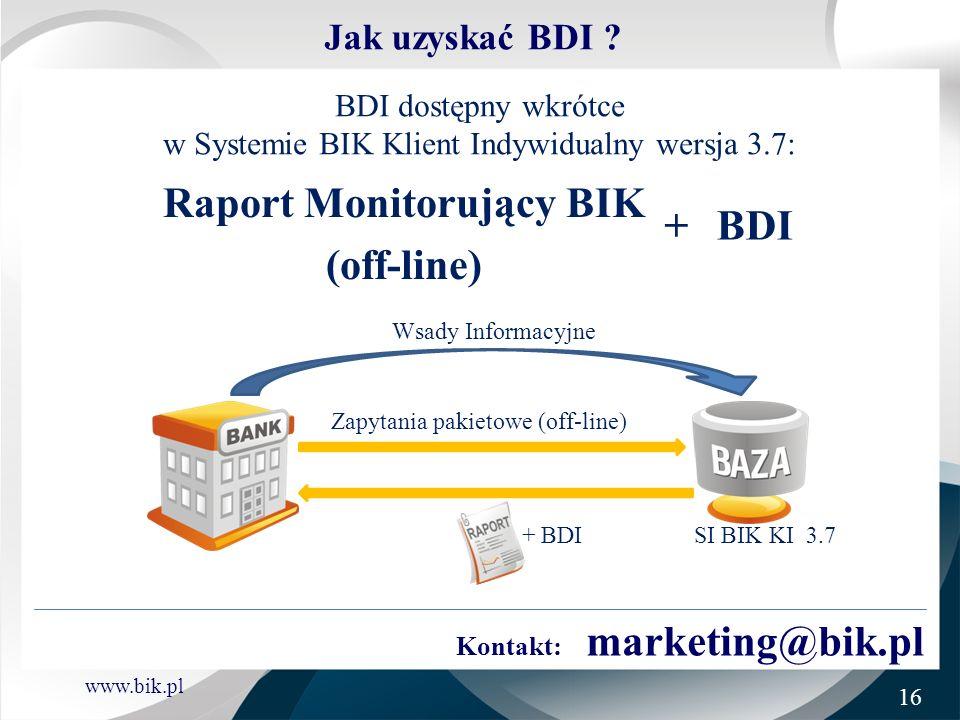 Raport Monitorujący BIK