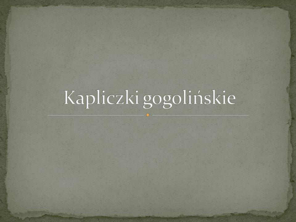 Kapliczki gogolińskie