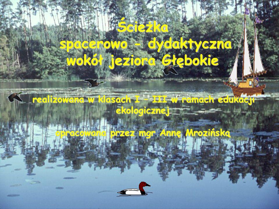 spacerowo - dydaktyczna wokół jeziora Głębokie