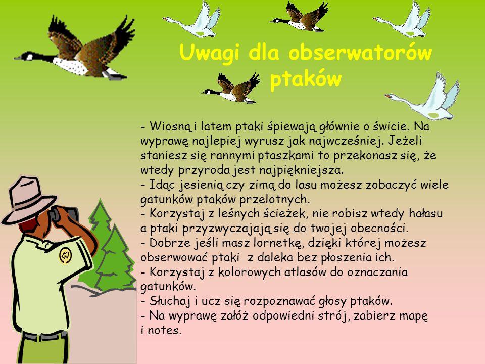 Uwagi dla obserwatorów ptaków