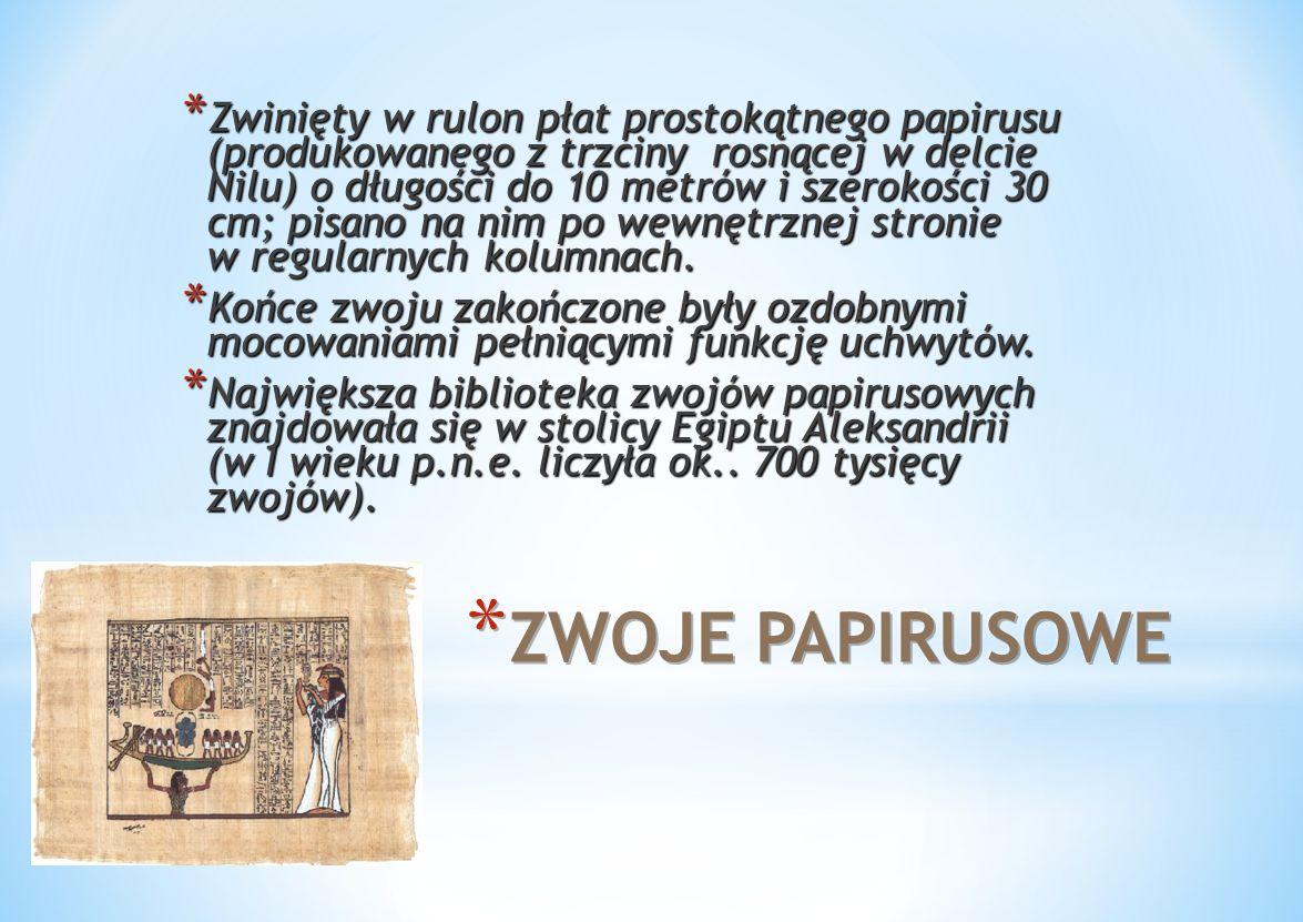 Zwinięty w rulon płat prostokątnego papirusu (produkowanego z trzciny rosnącej w delcie Nilu) o długości do 10 metrów i szerokości 30 cm; pisano na nim po wewnętrznej stronie w regularnych kolumnach.