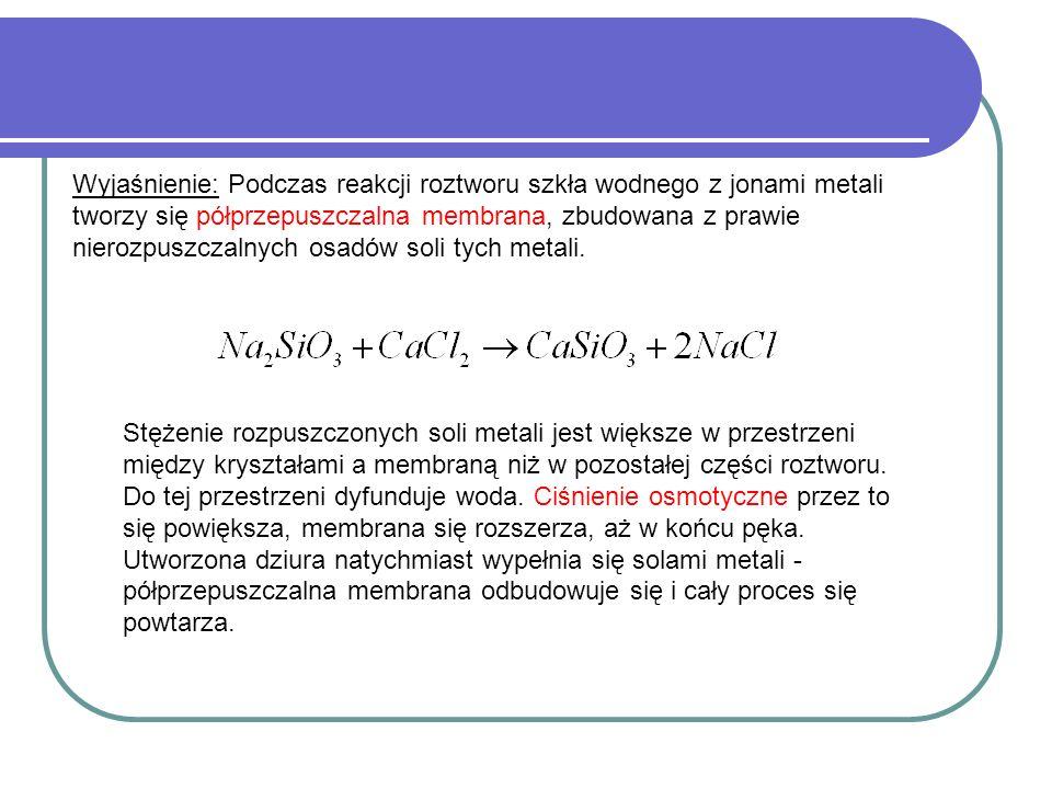 Wyjaśnienie: Podczas reakcji roztworu szkła wodnego z jonami metali tworzy się półprzepuszczalna membrana, zbudowana z prawie nierozpuszczalnych osadów soli tych metali.