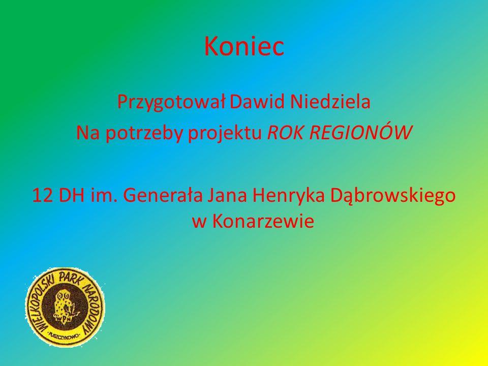 Koniec Przygotował Dawid Niedziela Na potrzeby projektu ROK REGIONÓW