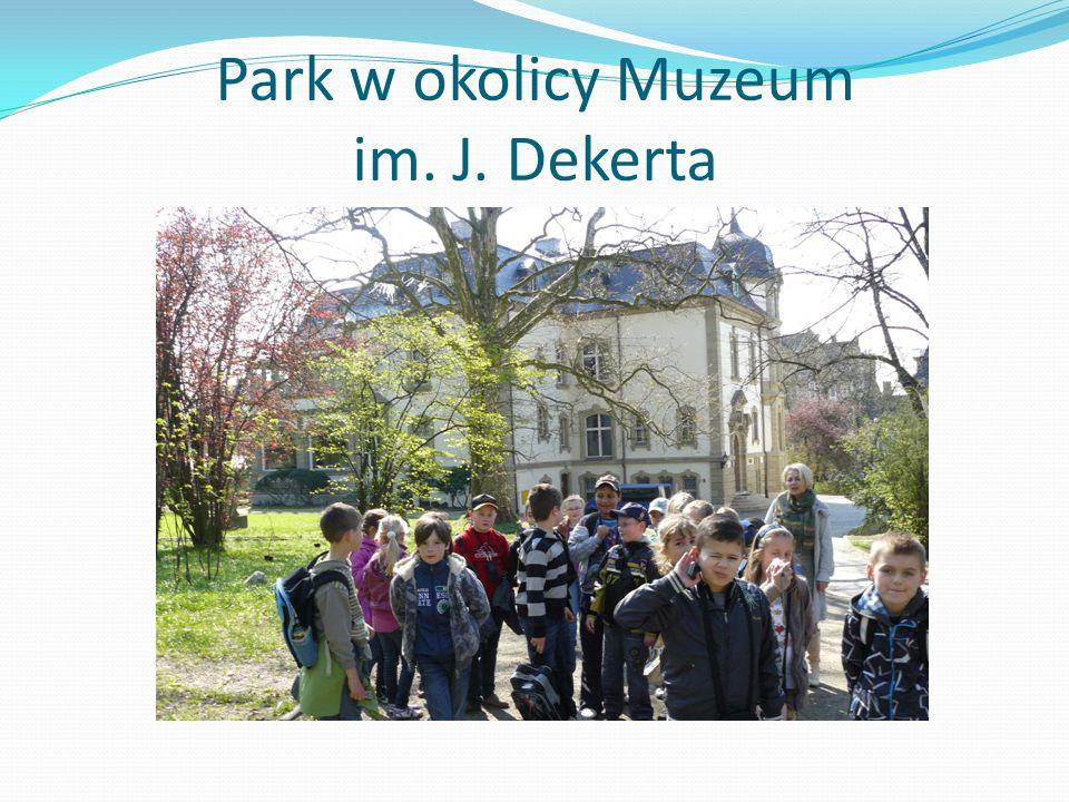 Park w okolicy Muzeum im. J. Dekerta