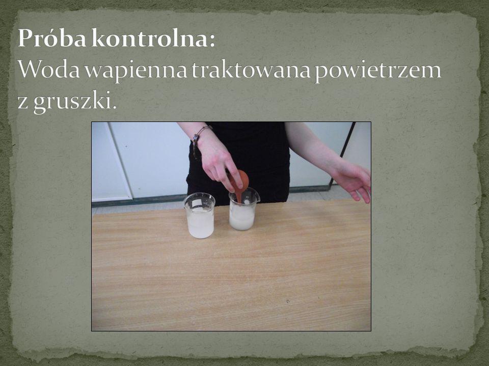 Próba kontrolna: Woda wapienna traktowana powietrzem z gruszki.