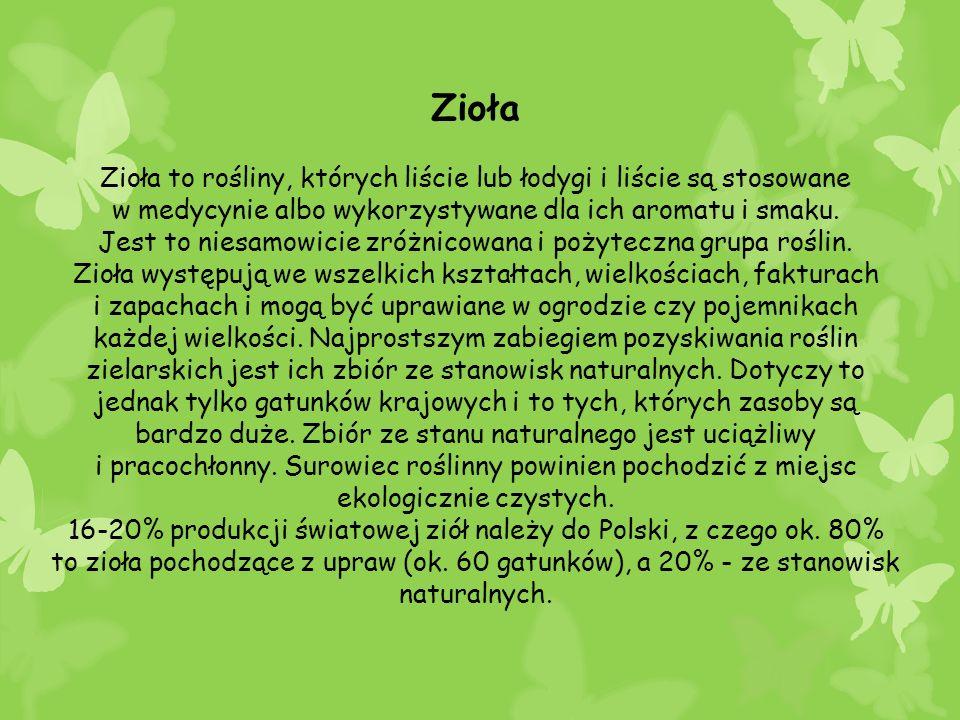 Zioła Zioła to rośliny, których liście lub łodygi i liście są stosowane. w medycynie albo wykorzystywane dla ich aromatu i smaku.
