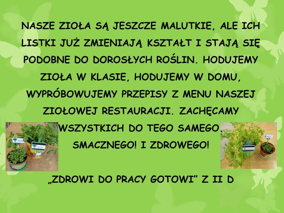 """""""ZDROWI DO PRACY GOTOWI Z II D"""
