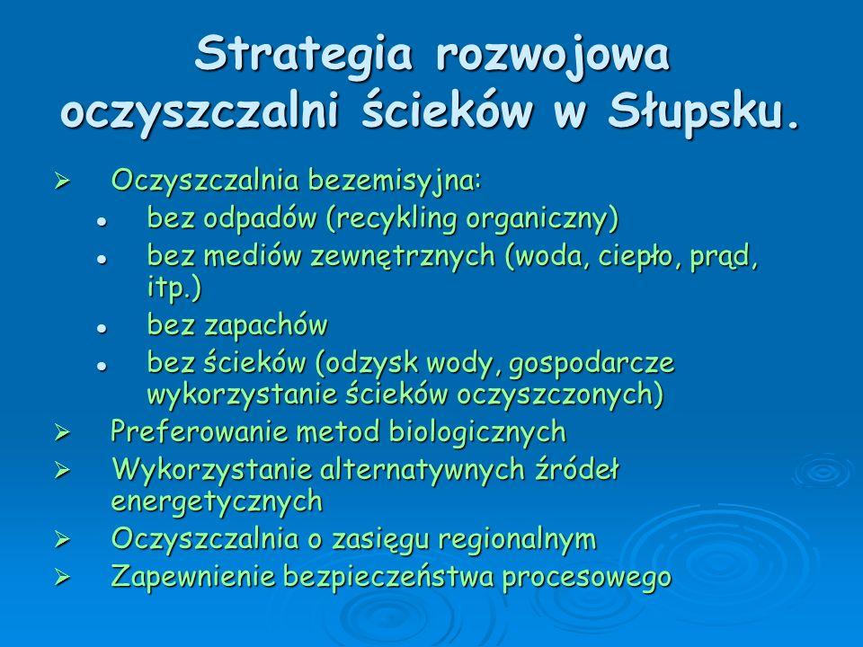 Strategia rozwojowa oczyszczalni ścieków w Słupsku.