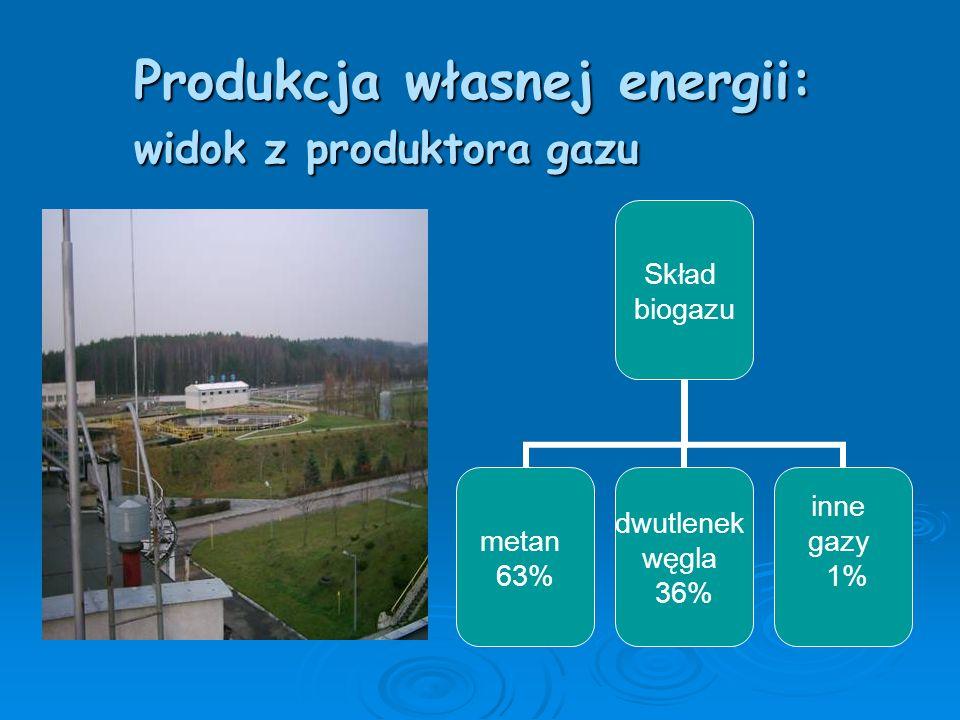 Produkcja własnej energii: widok z produktora gazu
