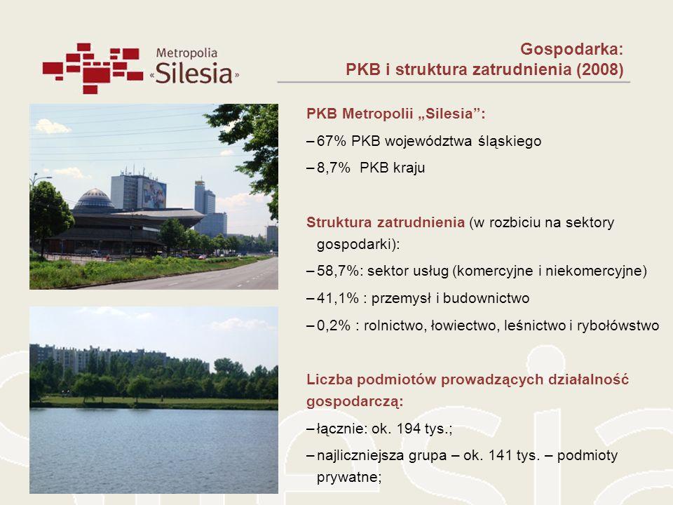 PKB i struktura zatrudnienia (2008)