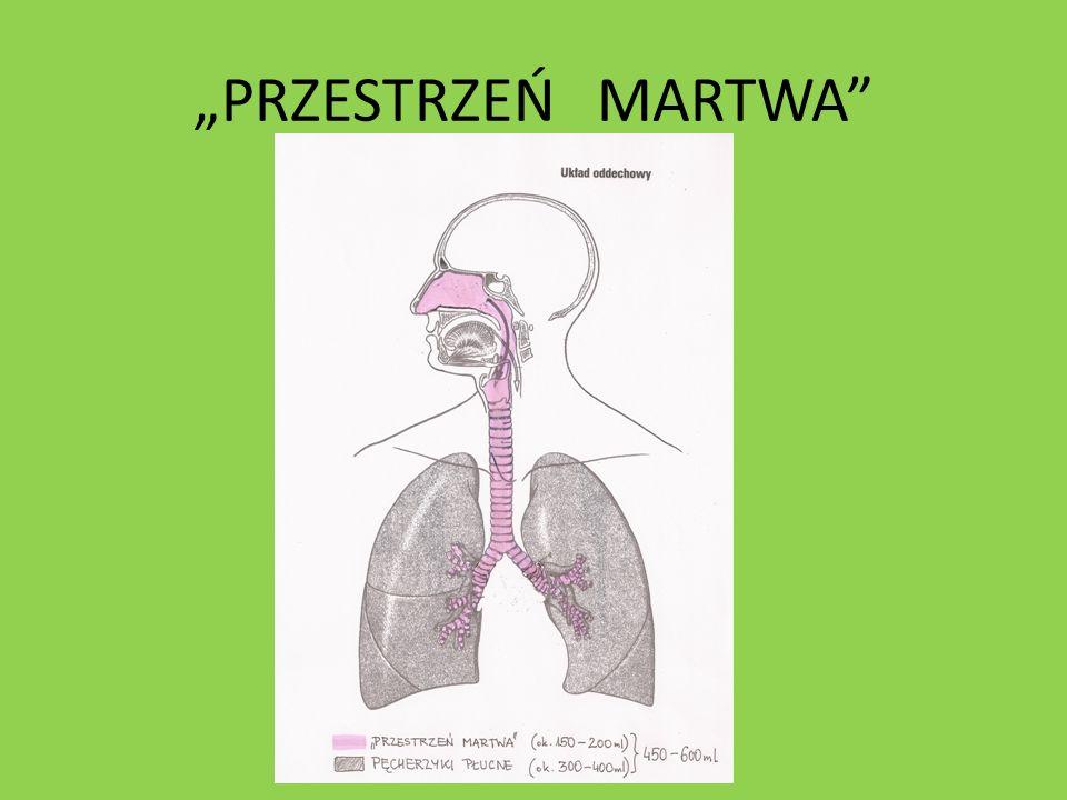 """""""PRZESTRZEŃ MARTWA"""