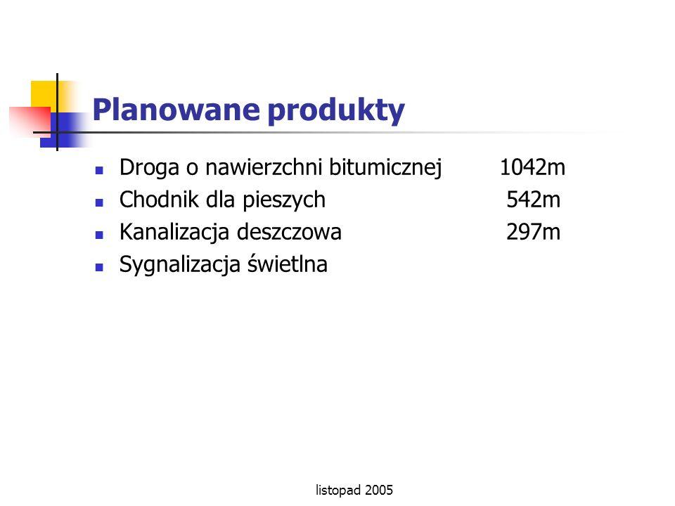 Planowane produkty Droga o nawierzchni bitumicznej 1042m
