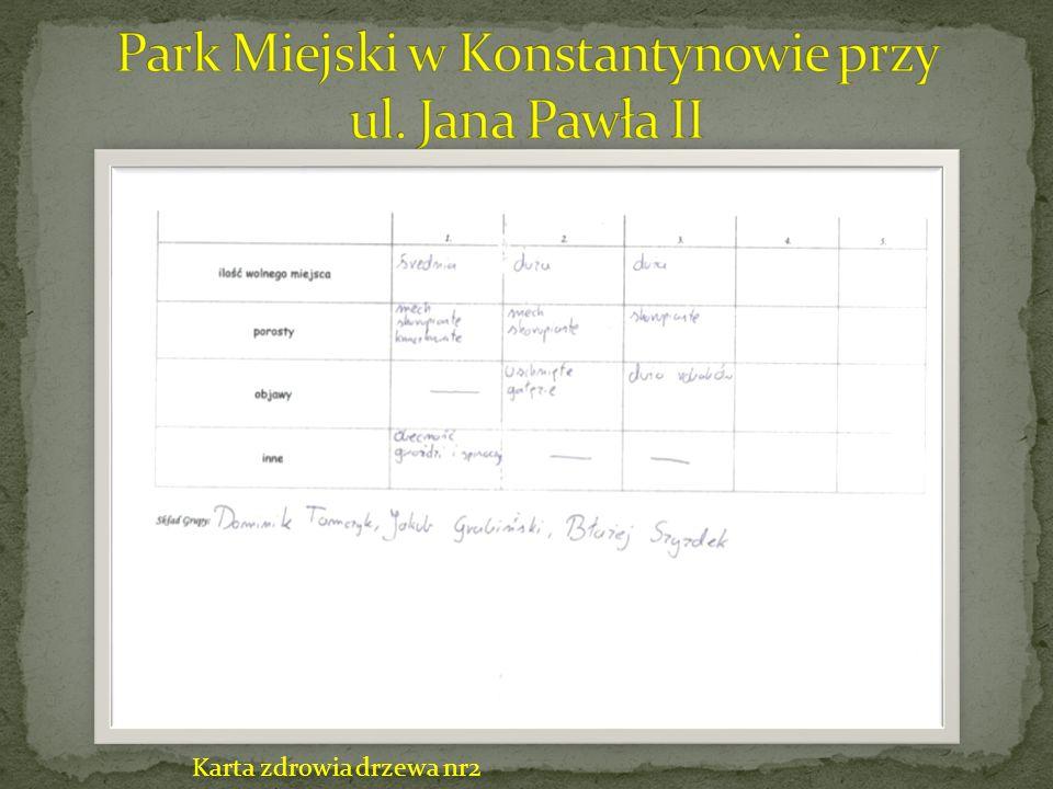 Park Miejski w Konstantynowie przy ul. Jana Pawła II