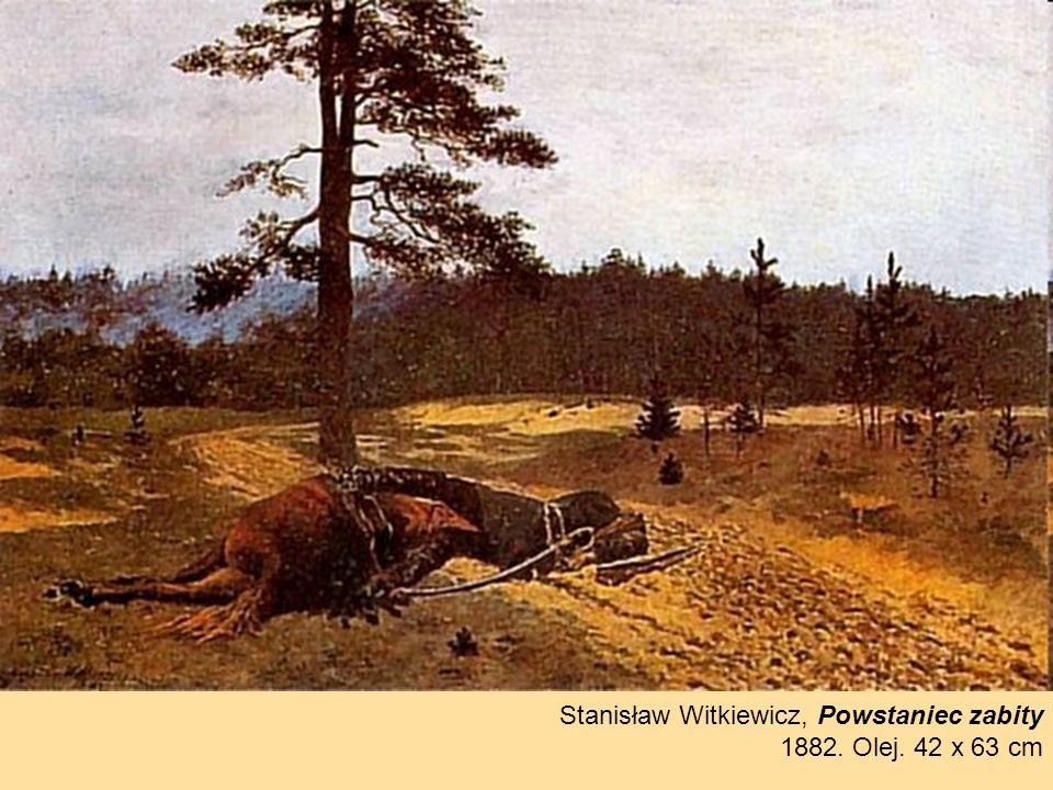 Stanisław Witkiewicz, Powstaniec zabity