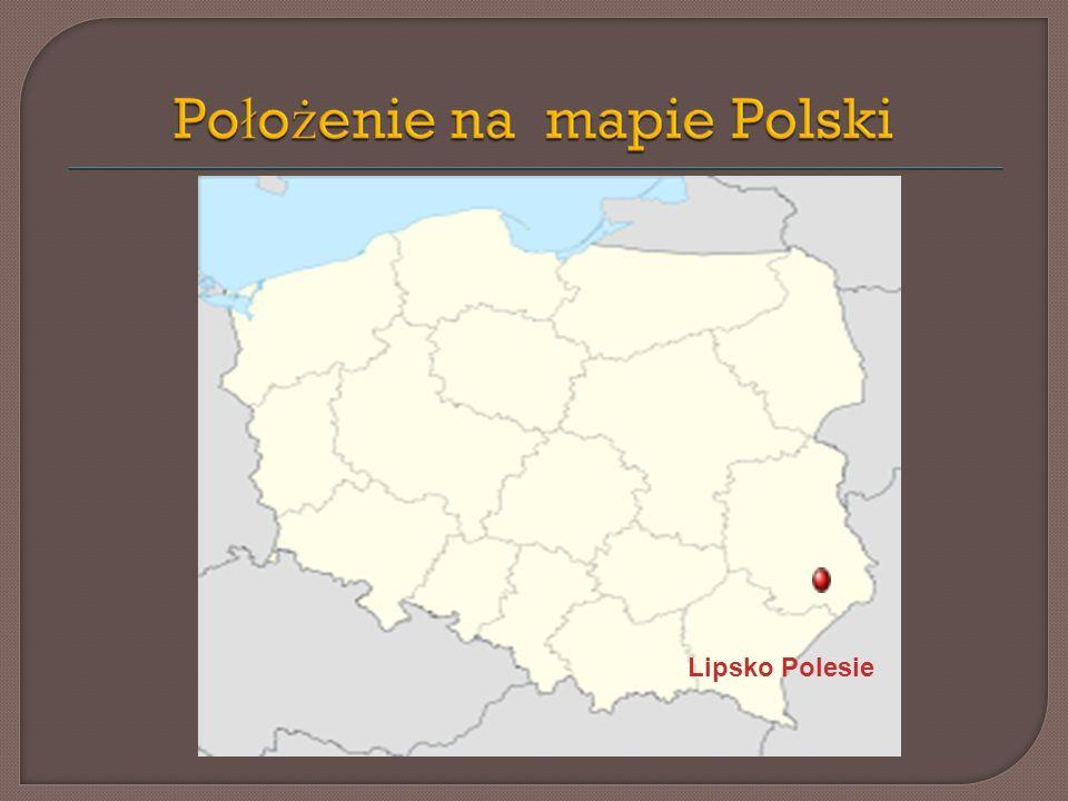 Lipsko Polesie