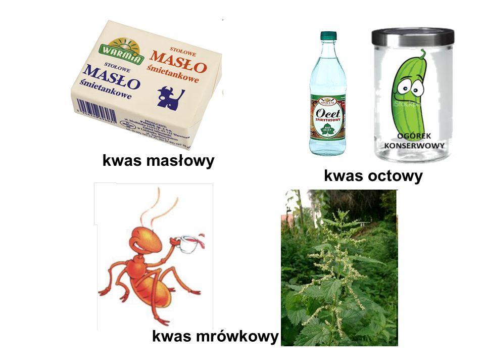 kwas masłowy kwas octowy kwas mrówkowy
