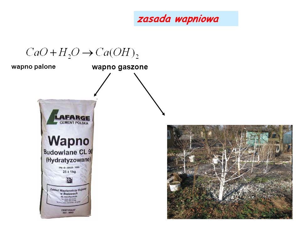 zasada wapniowa wapno palone wapno gaszone