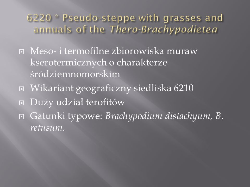 6220 * Pseudo-steppe with grasses and annuals of the Thero-Brachypodietea