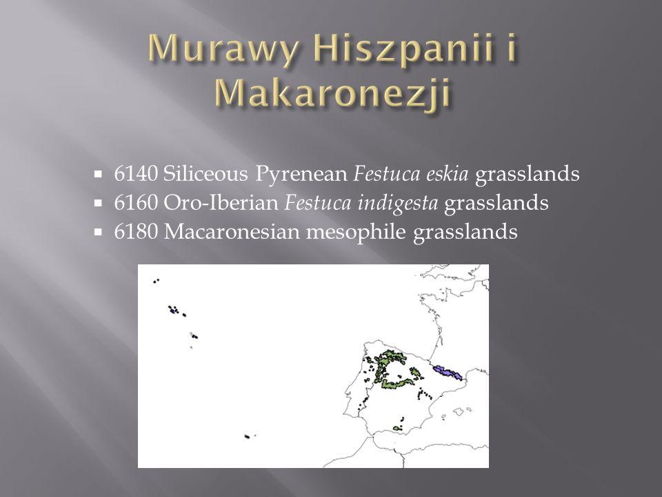 Murawy Hiszpanii i Makaronezji