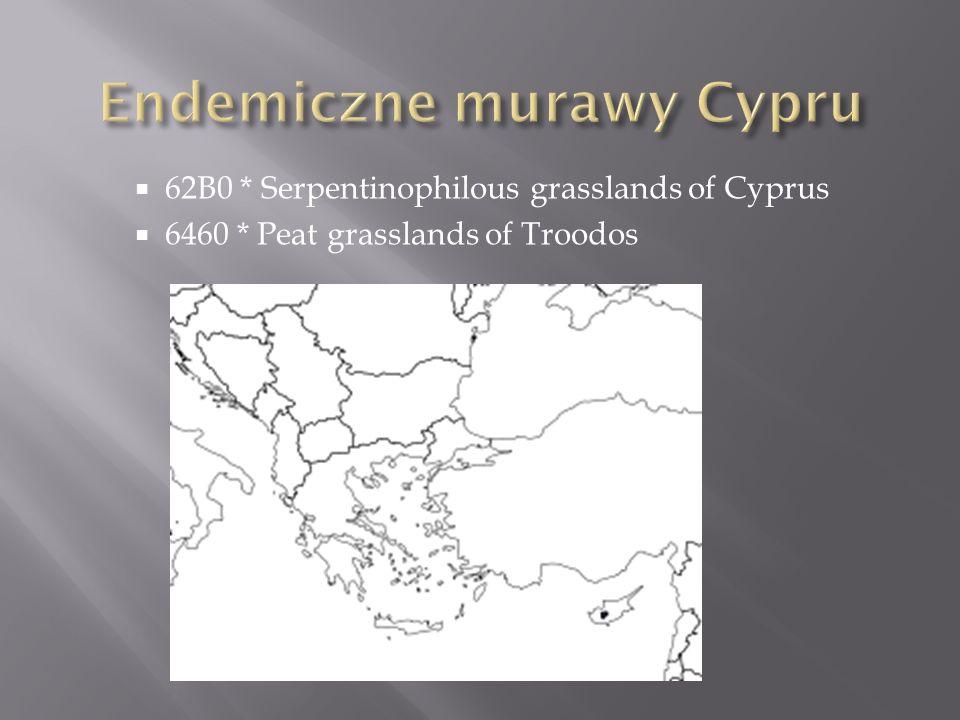 Endemiczne murawy Cypru