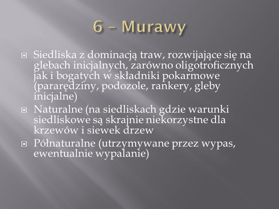 6 – Murawy