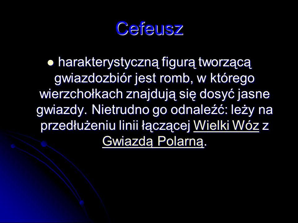 Cefeusz