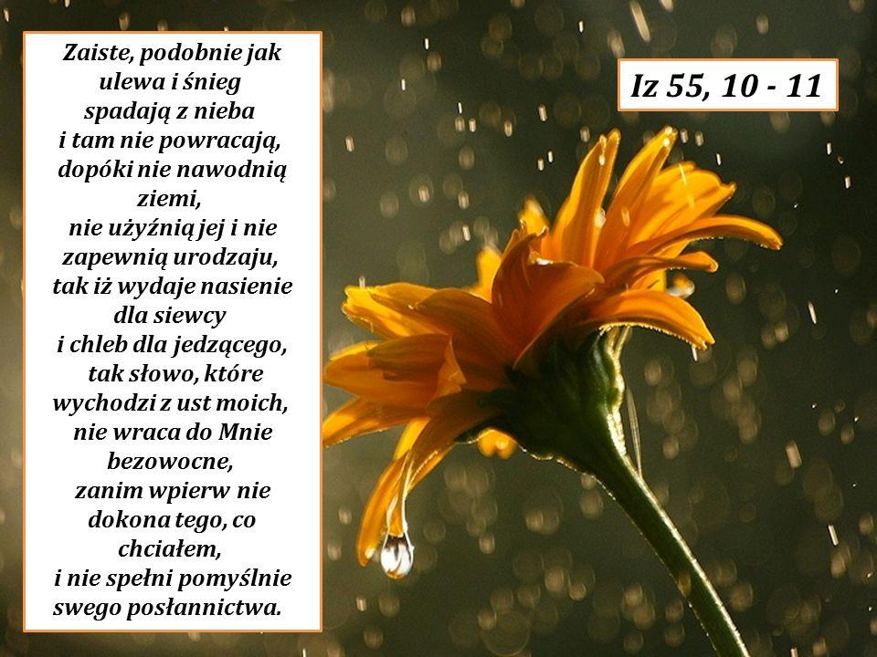 Zaiste, podobnie jak ulewa i śnieg spadają z nieba i tam nie powracają, dopóki nie nawodnią ziemi, nie użyźnią jej i nie zapewnią urodzaju, tak iż wydaje nasienie dla siewcy i chleb dla jedzącego,