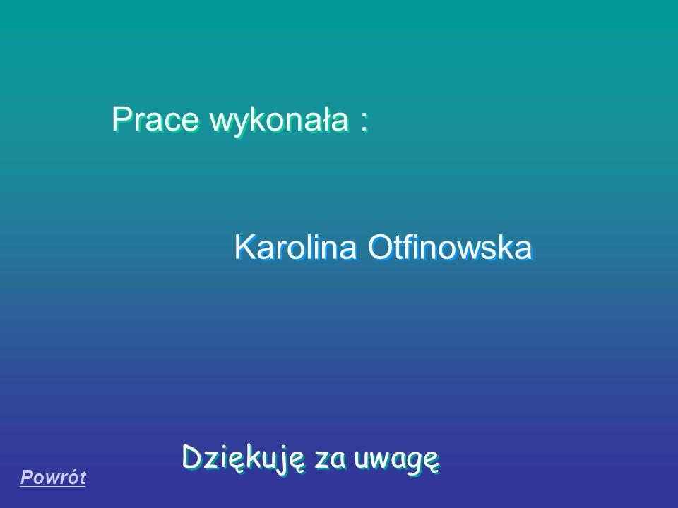 Prace wykonała : Karolina Otfinowska Dziękuję za uwagę Powrót