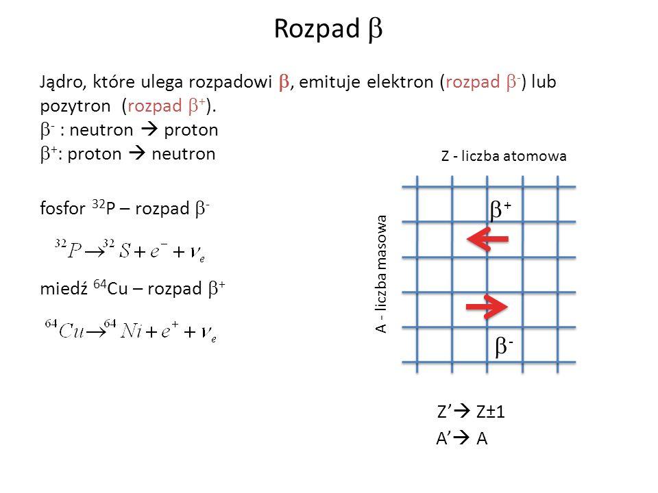 Rozpad b Jądro, które ulega rozpadowi b, emituje elektron (rozpad b-) lub pozytron (rozpad b+). b- : neutron  proton.