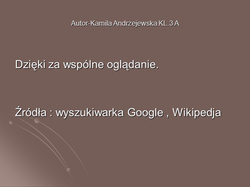 Autor-Kamila Andrzejewska KL.3 A