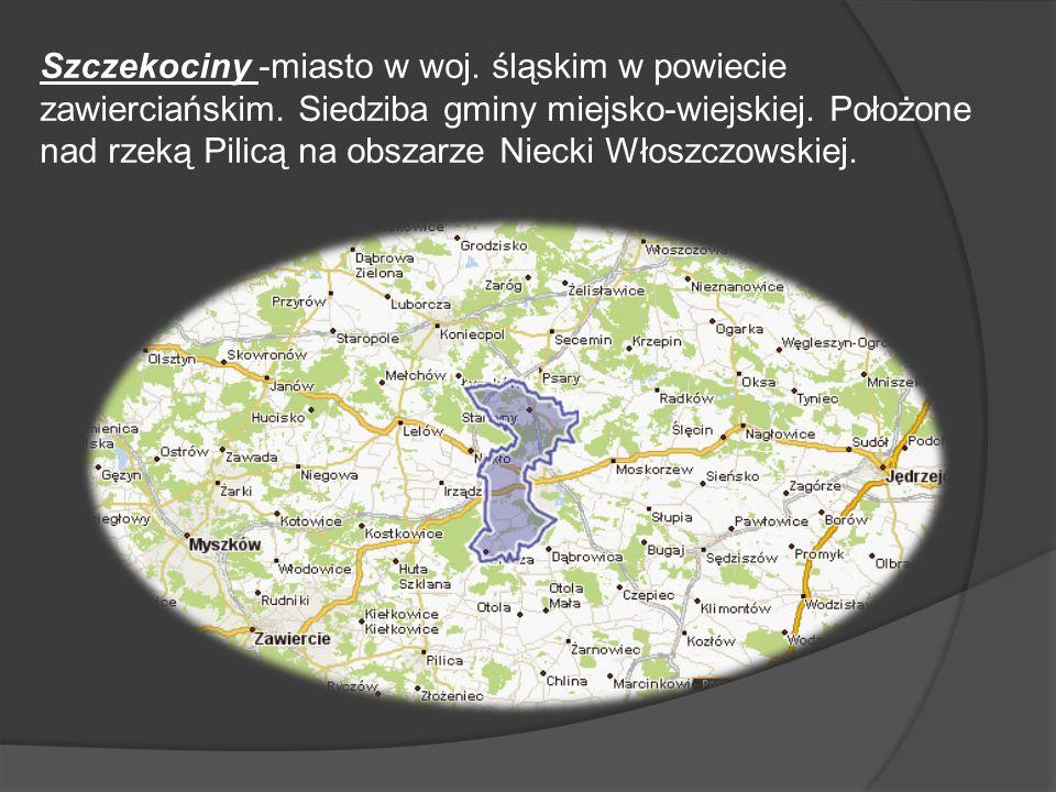 Szczekociny -miasto w woj. śląskim w powiecie zawierciańskim