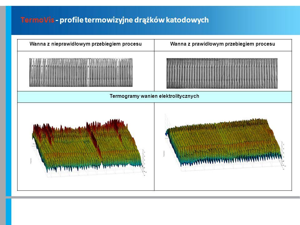 TermoVis - profile termowizyjne drążków katodowych