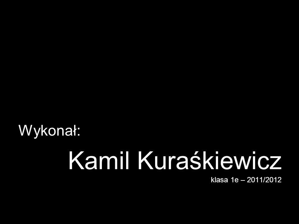 Kamil Kuraśkiewicz klasa 1e – 2011/2012
