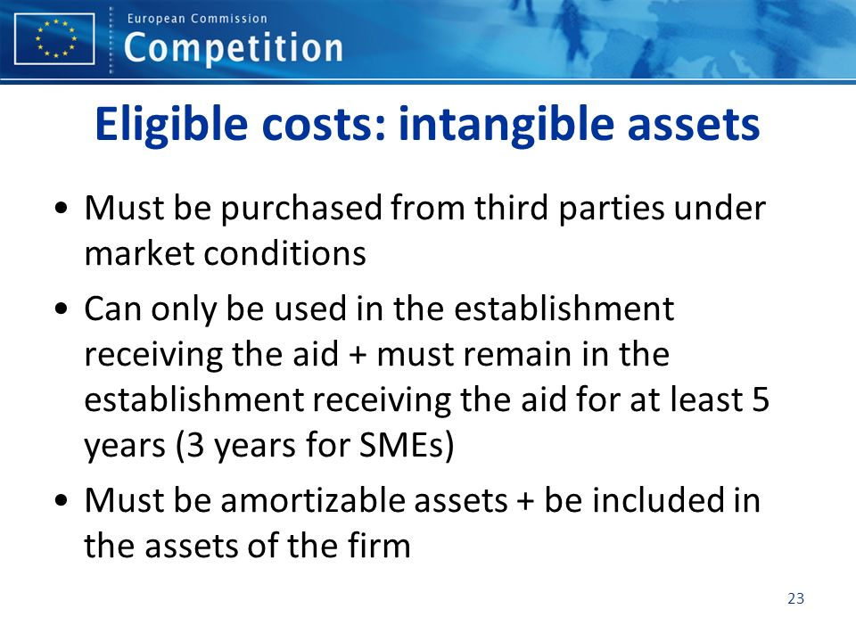 Eligible costs: intangible assets