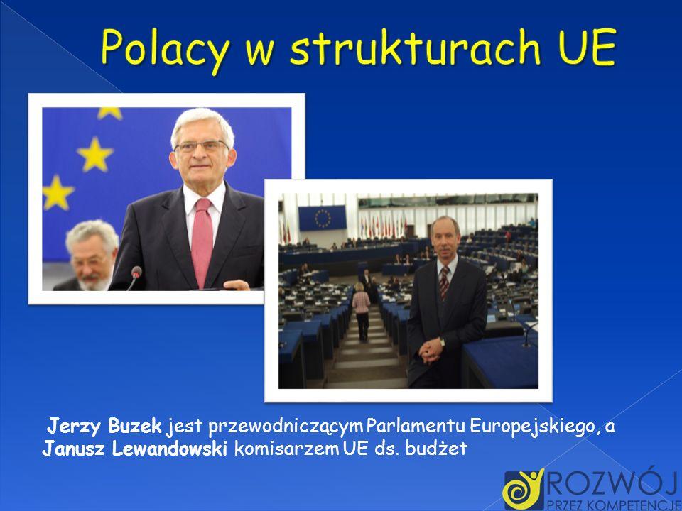 Polacy w strukturach UE
