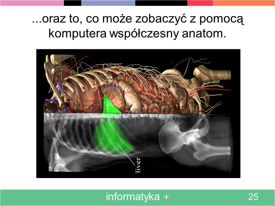 ...oraz to, co może zobaczyć z pomocą komputera współczesny anatom.