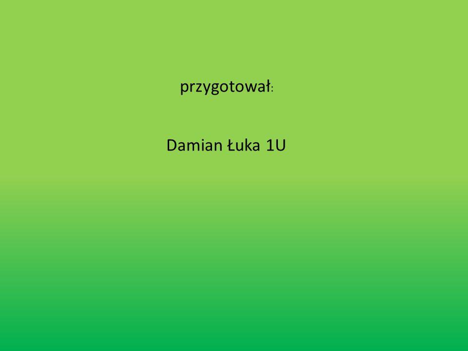 przygotował: Damian Łuka 1U