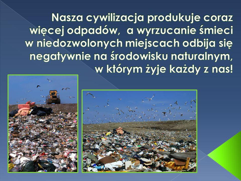 Nasza cywilizacja produkuje coraz więcej odpadów, a wyrzucanie śmieci w niedozwolonych miejscach odbija się negatywnie na środowisku naturalnym, w którym żyje każdy z nas!