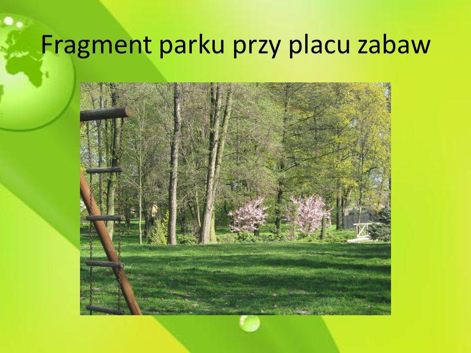 Fragment parku przy placu zabaw