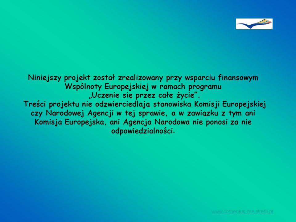 Niniejszy projekt został zrealizowany przy wsparciu finansowym