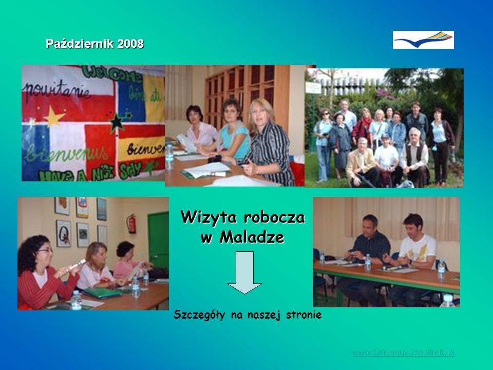 Wizyta robocza w Maladze