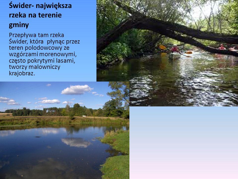 Świder- największa rzeka na terenie gminy