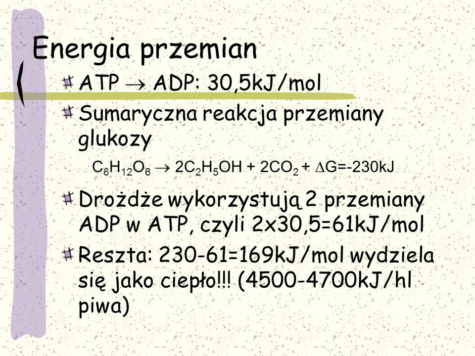 Energia przemian ATP  ADP: 30,5kJ/mol