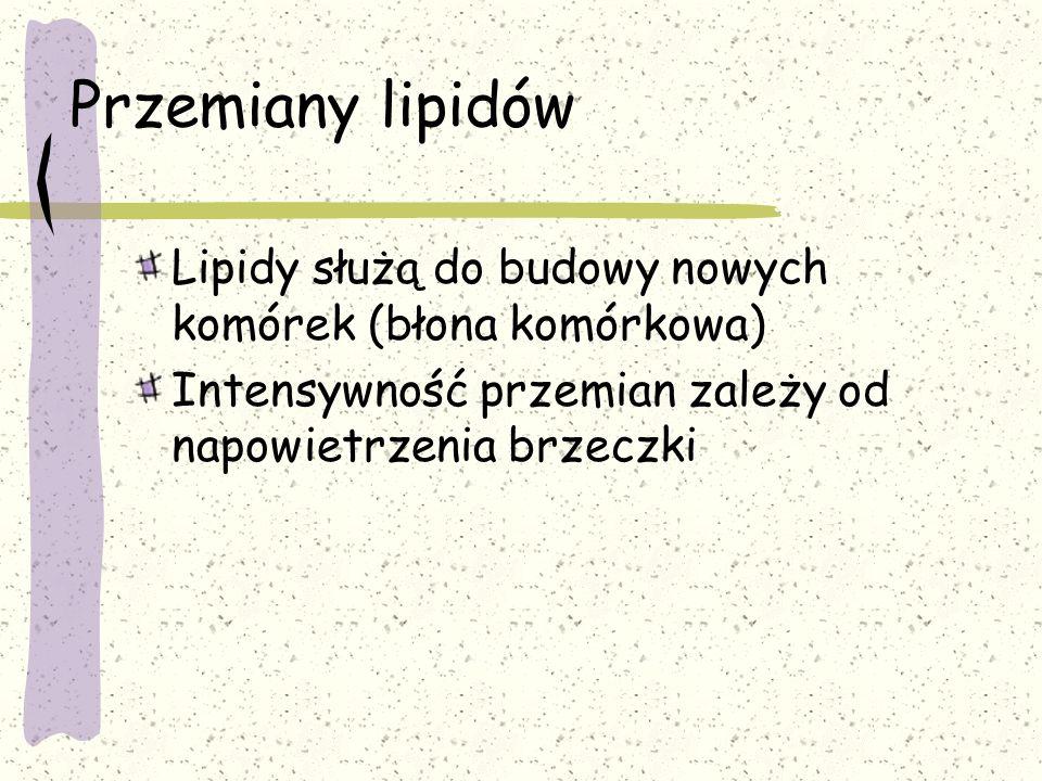 Przemiany lipidów Lipidy służą do budowy nowych komórek (błona komórkowa) Intensywność przemian zależy od napowietrzenia brzeczki.