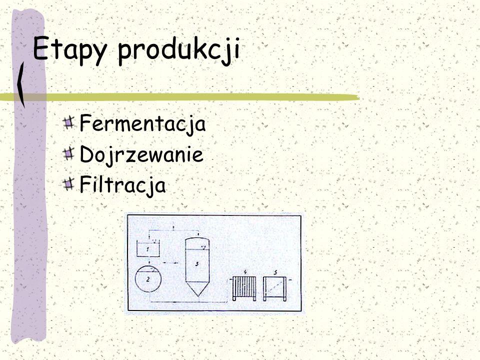 Etapy produkcji Fermentacja Dojrzewanie Filtracja
