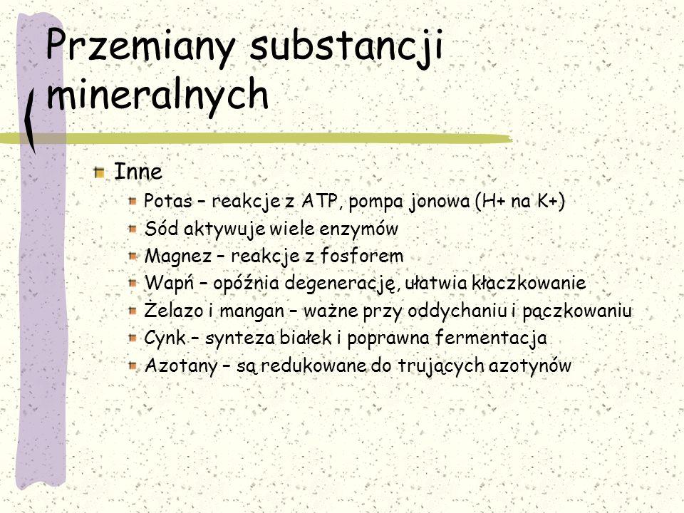 Przemiany substancji mineralnych