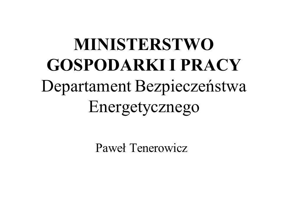 MINISTERSTWO GOSPODARKI I PRACY Departament Bezpieczeństwa Energetycznego